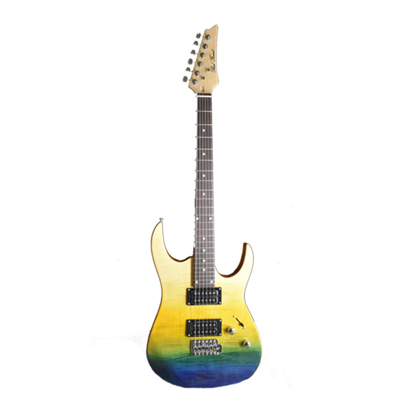 Electric Guitar RFEGI 904