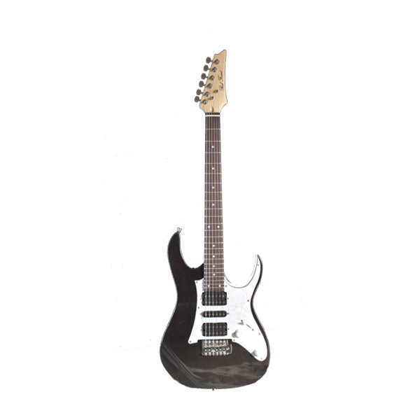 Electric Guitar RFIB-150