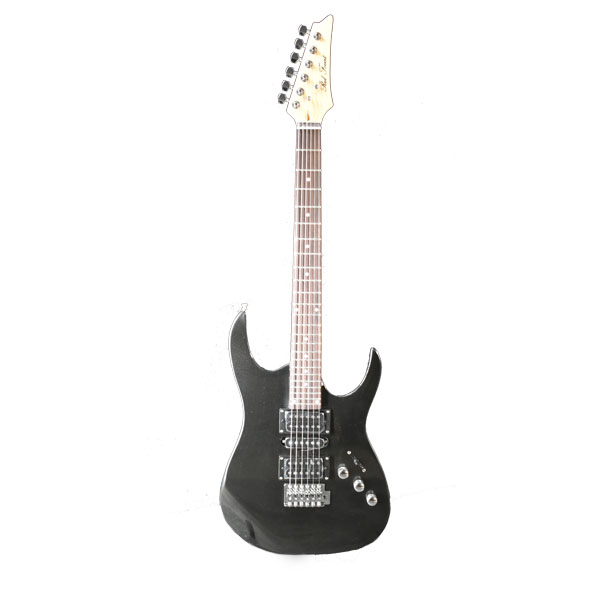 Electric Guitar RFIB-170